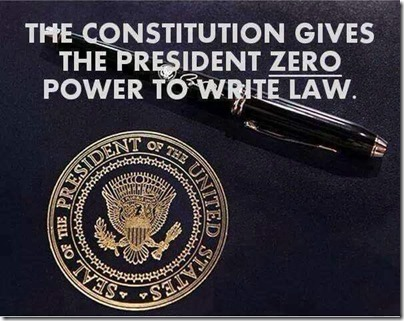 president cannot write law